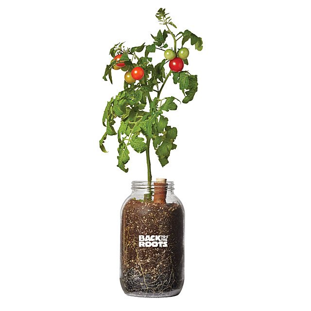 Self-Watering Tomato Planter $30.00