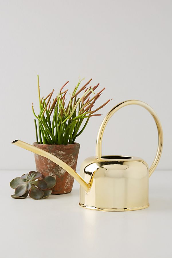 Golden Watering Can $38.00
