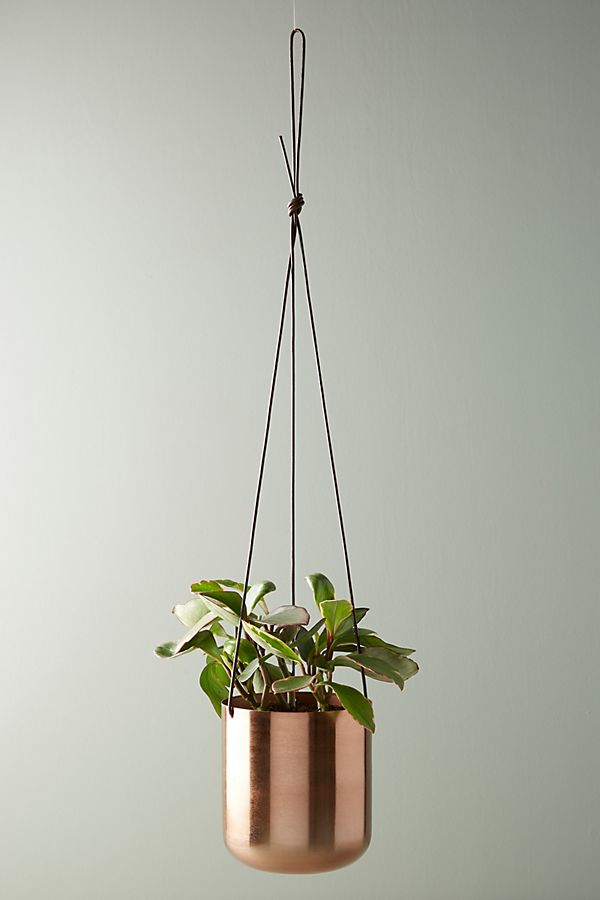 Copper Hanging Planter $28.00