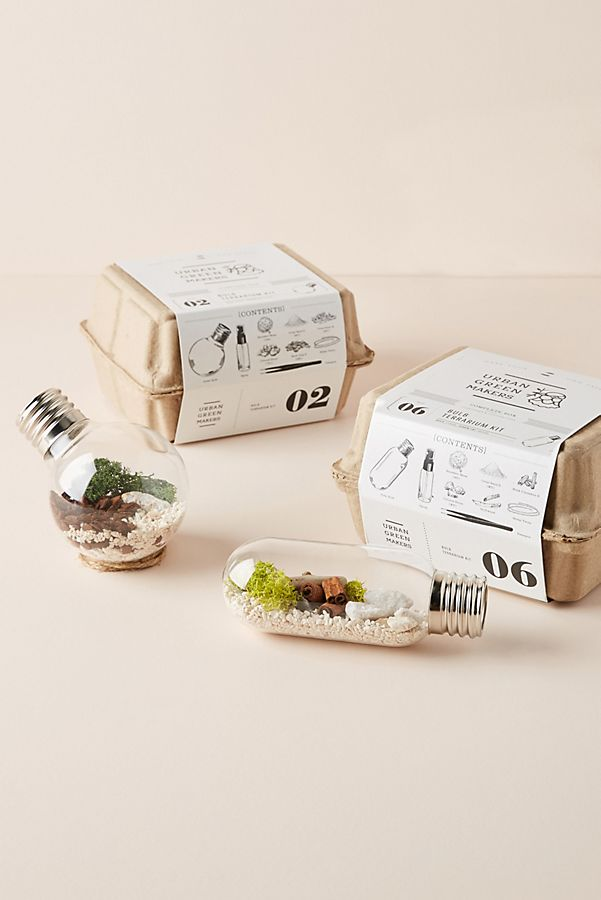 Urban Green Makers Terrarium Kit $36.00