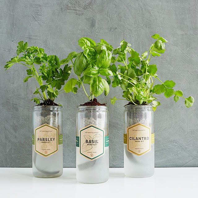 Kitchen Essentials Herb Planter $18.00-25.00