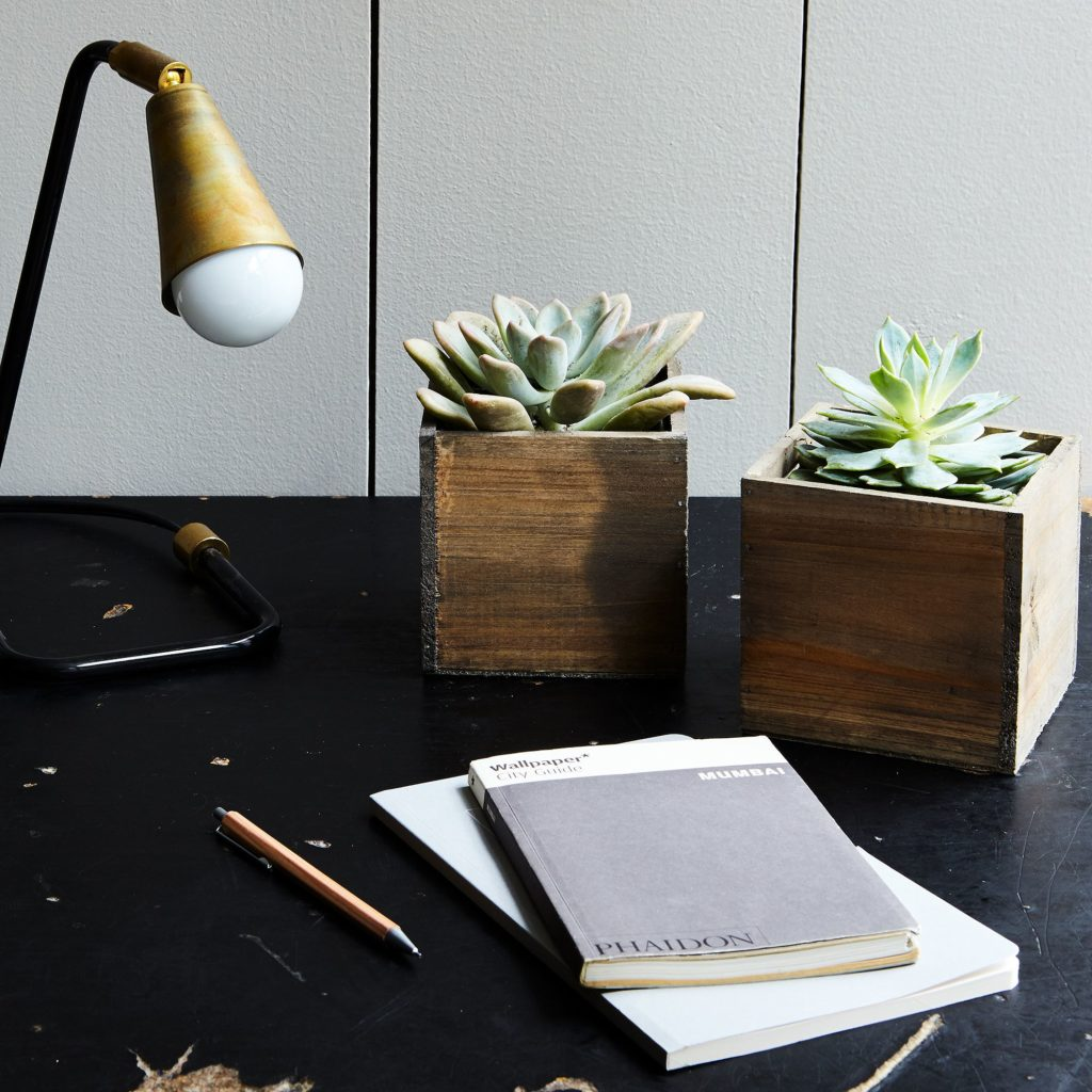 Succulent and Wood Planter (Set of 2) $45