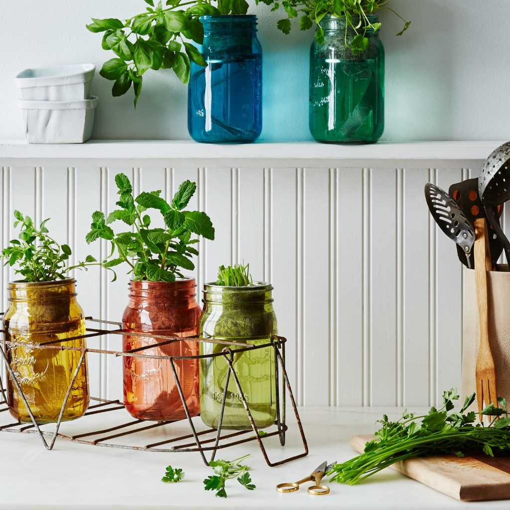 Garden Jar Herb Kit $20–$100