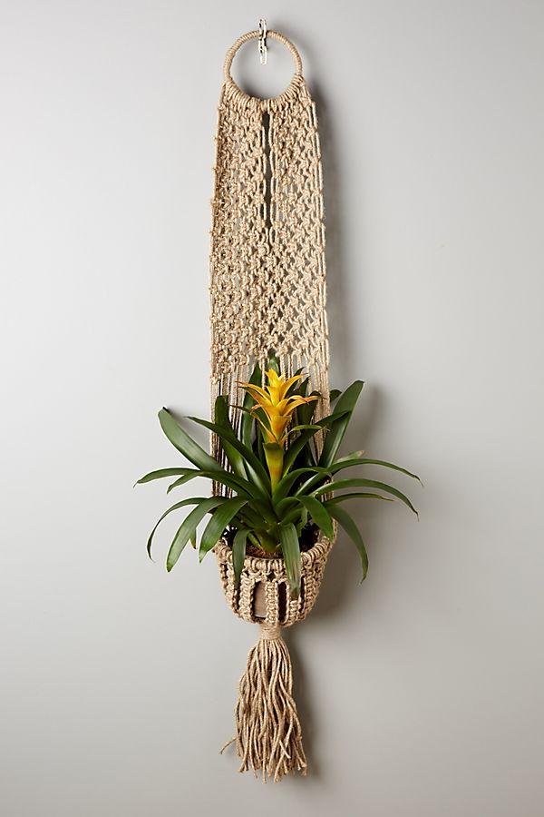 Macrame Plant Hanger $58.00
