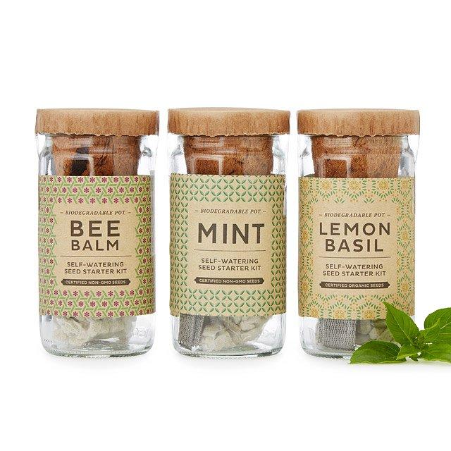 Grow Your Own Herbal Tea Kit $35.00
