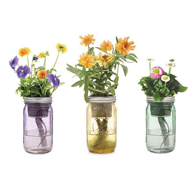 Mason Jar Indoor Flower Garden $20.00