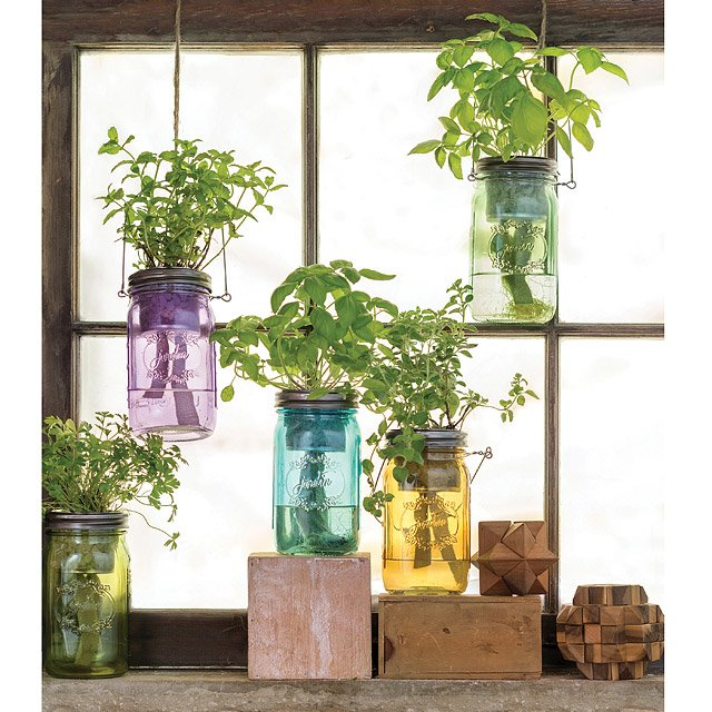 Mason Jar Indoor Herb Garden $20.00