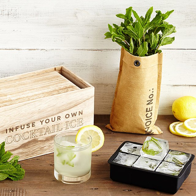 Grow & Infuse Cocktail Ice Kit $40.00