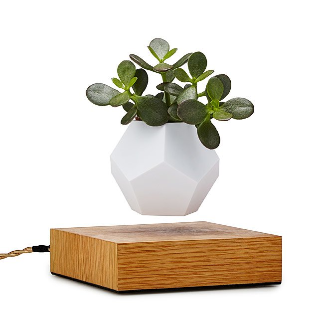 The Levitating Planter $299.00