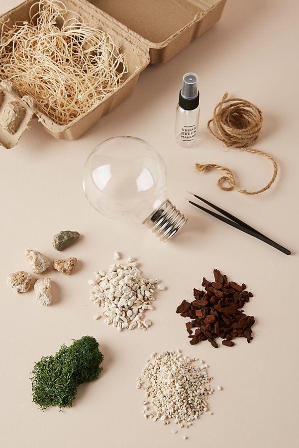 Urban Green Makers Terrarium Kit $36.00