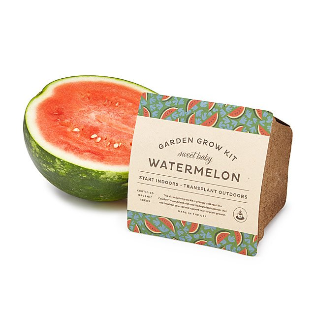 Baby Watermelon Grow Kit $10.00