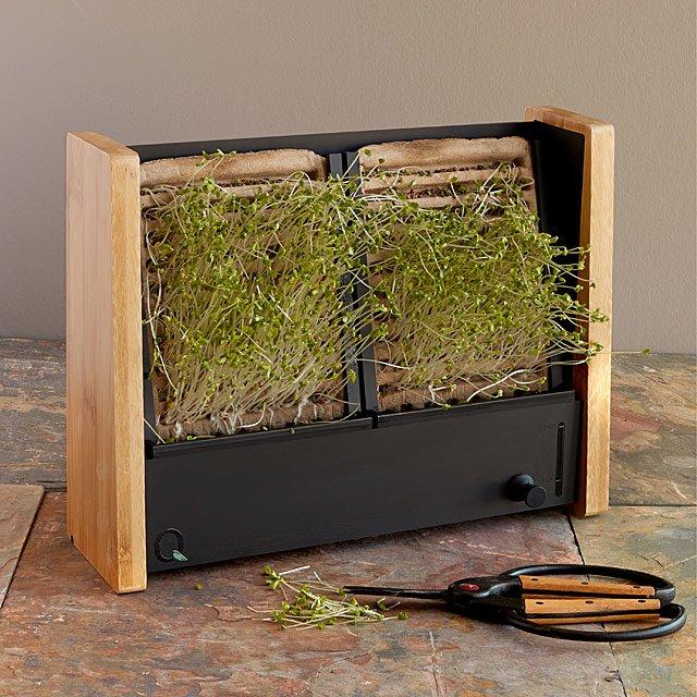 Microgreen Vertical Garden $10.00-60.00