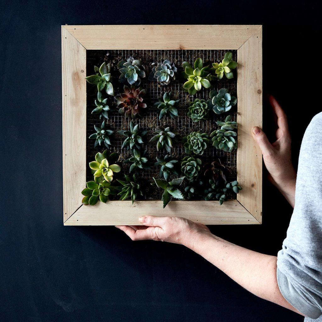 DIY Vertical Succulent Garden $130