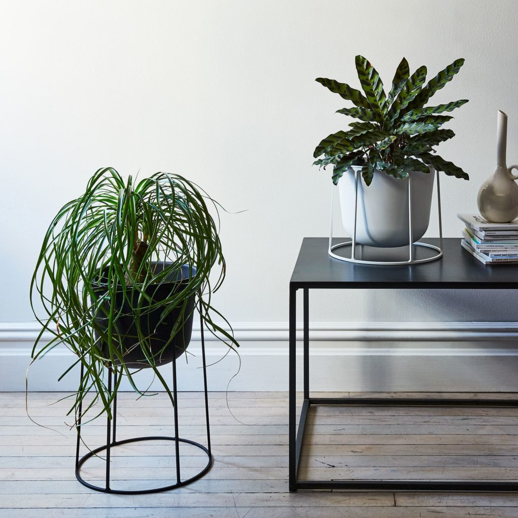 Wire Plant Stands $85–$110