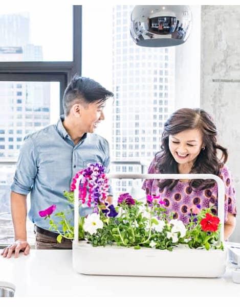 Click & Grow Smart Garden 9 $200.00