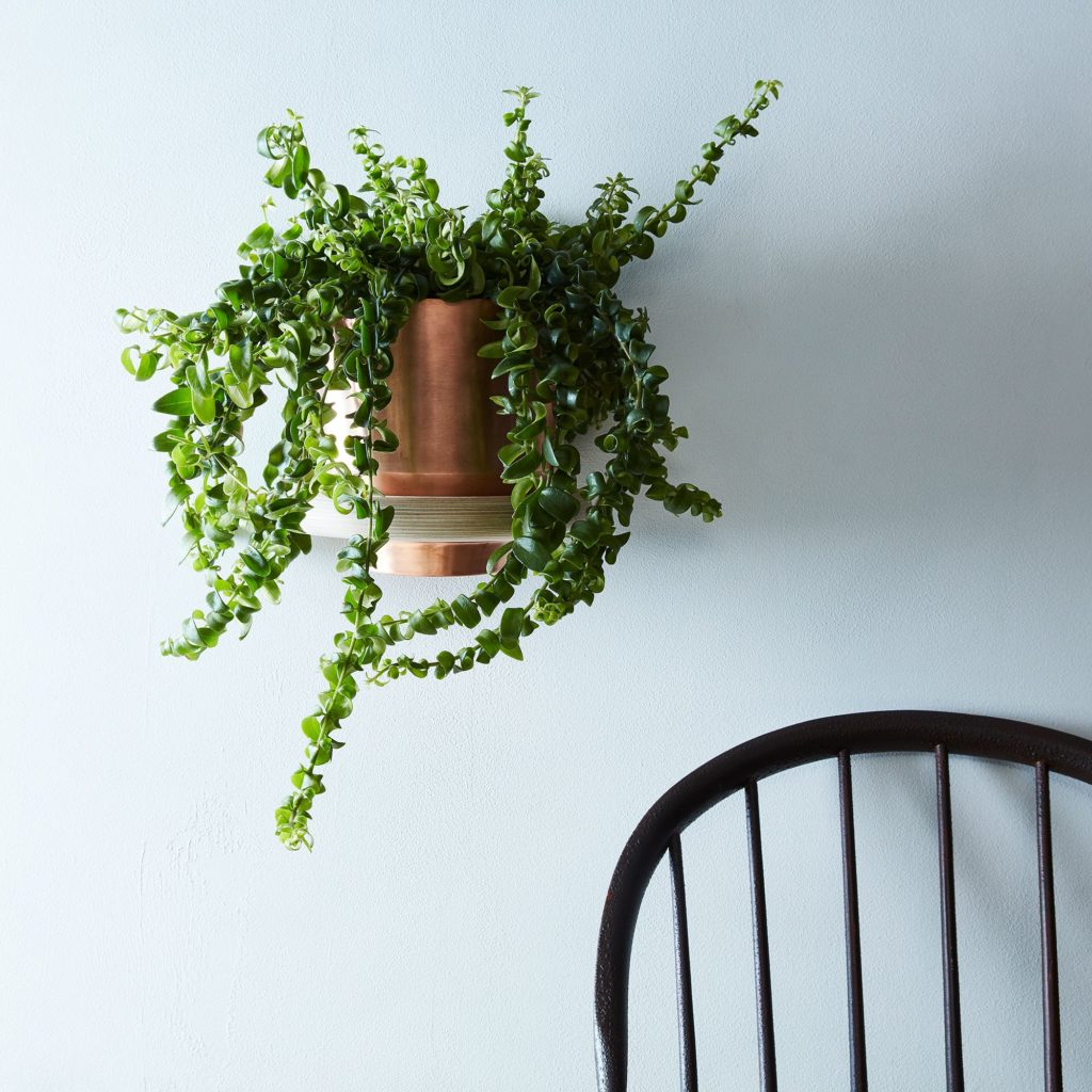 Spun Planter & Wall Mount $110