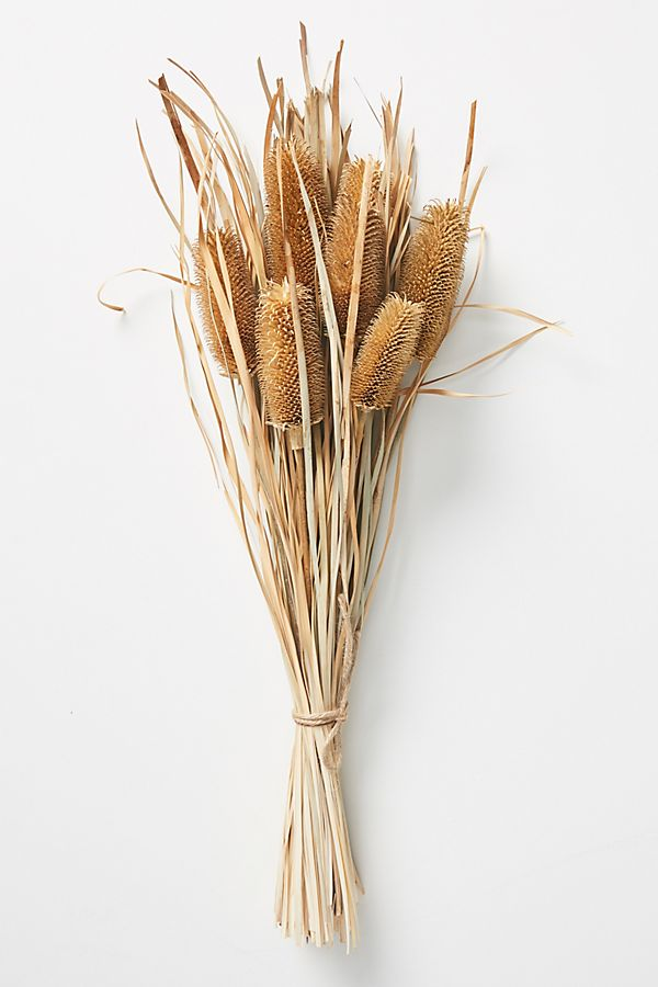 Dried Banksia Bouquet $24.00