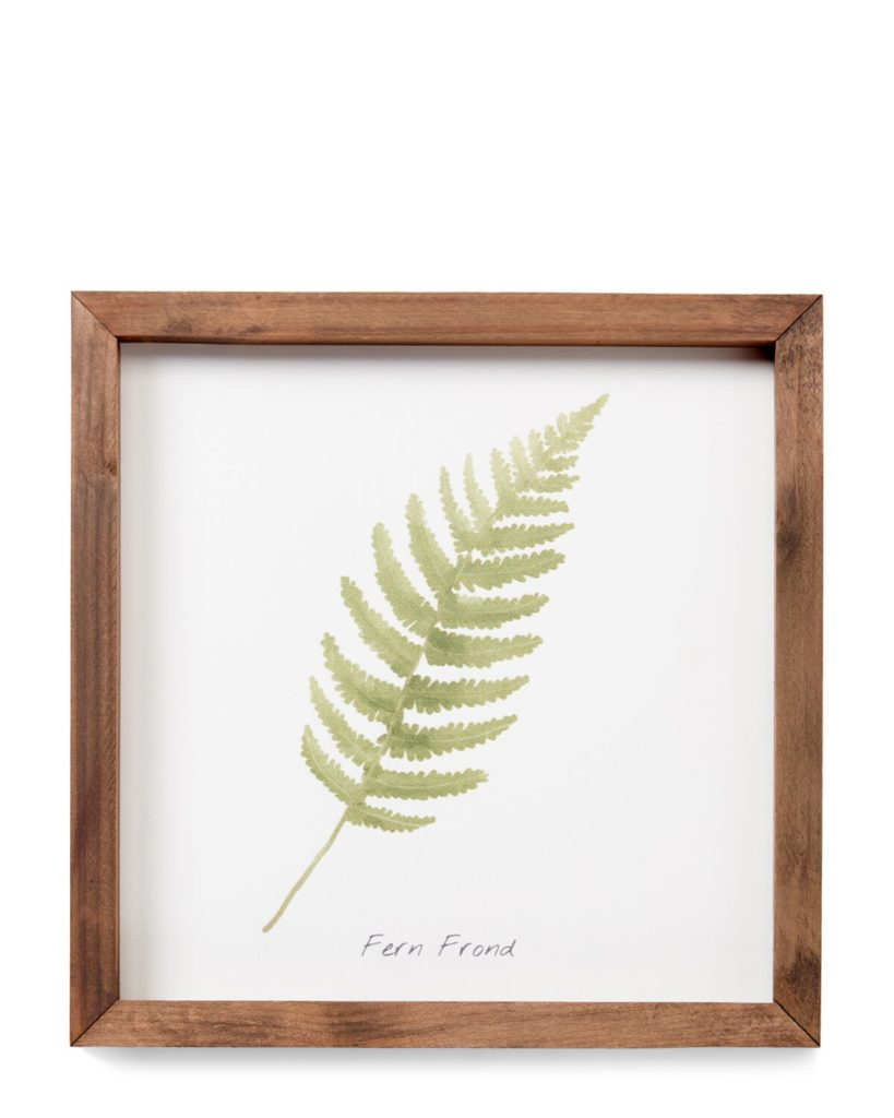 Fern Frond Wall Art $14.99