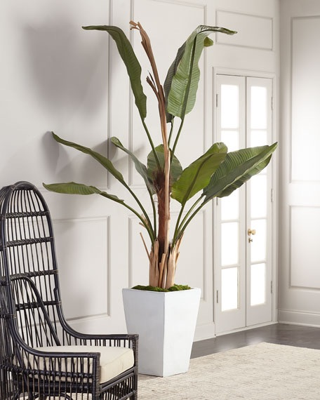 John-Richard Collection Glacier Banana Tree $1,900.00