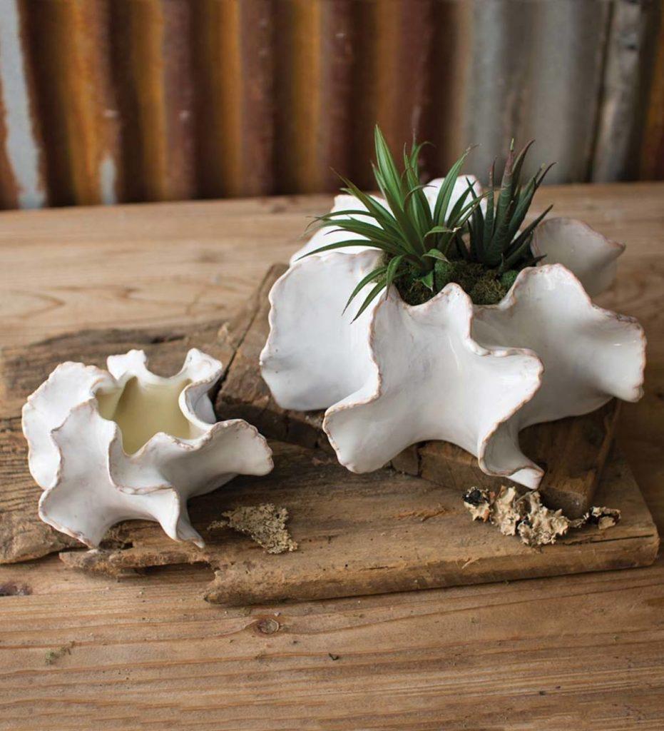 Organic Ceramic Planters Set Of 2 $69.99