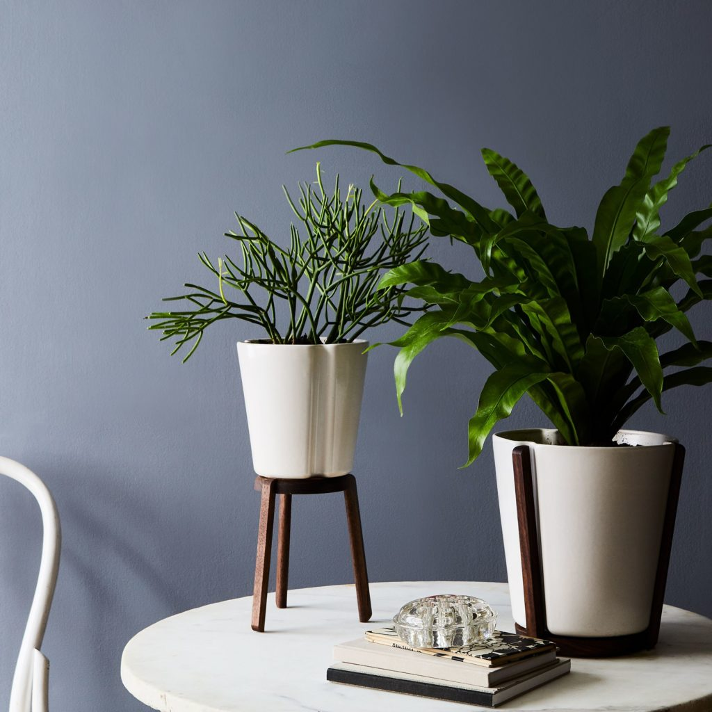 Ceramic & Walnut Base Planter$145–$195