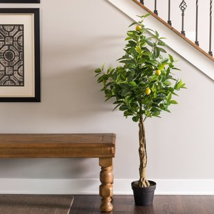 Real Touch Lemon Foliage Tree in Pot $69.99