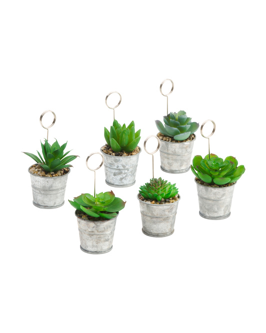 Set Of 6 Faux Succulent Table Signs $14.99