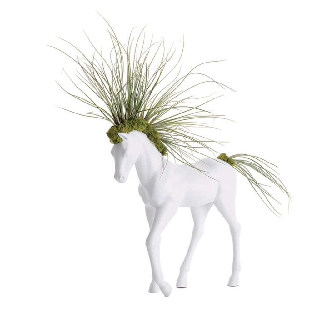HORSE SMALL WALKING - JUNCEA AIRPLANTS (MADE TO ORDER) $415.00