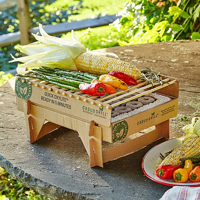 Eco-Friendly Instant Grill $15.00