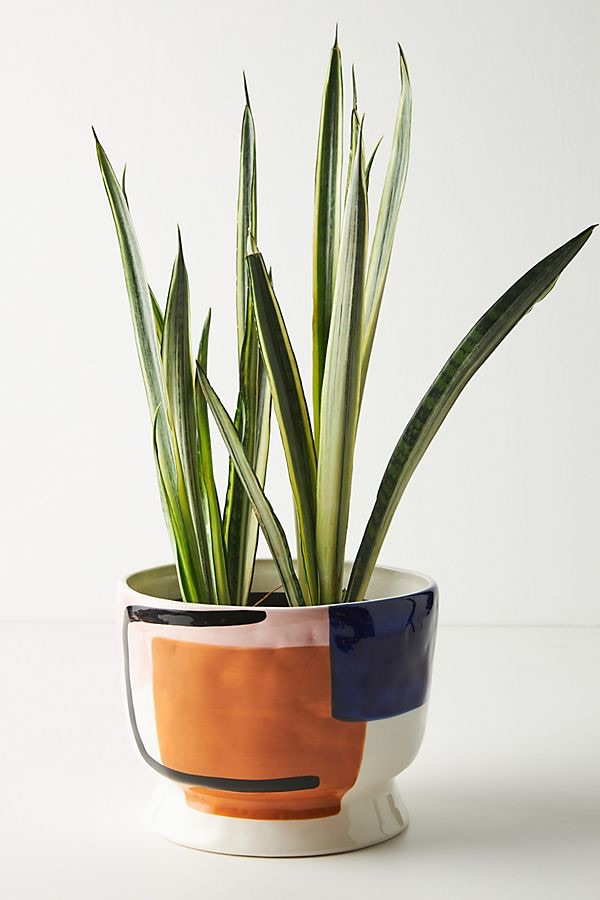 Sharona Pot$58.00https://fave.co/37Zl29D