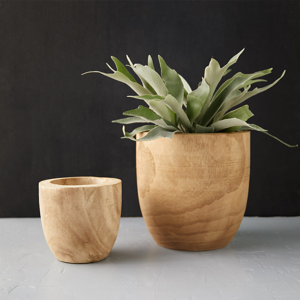 "Pawlonia Wood Egg Pot, 7-10"" $34.00 – $54.00"