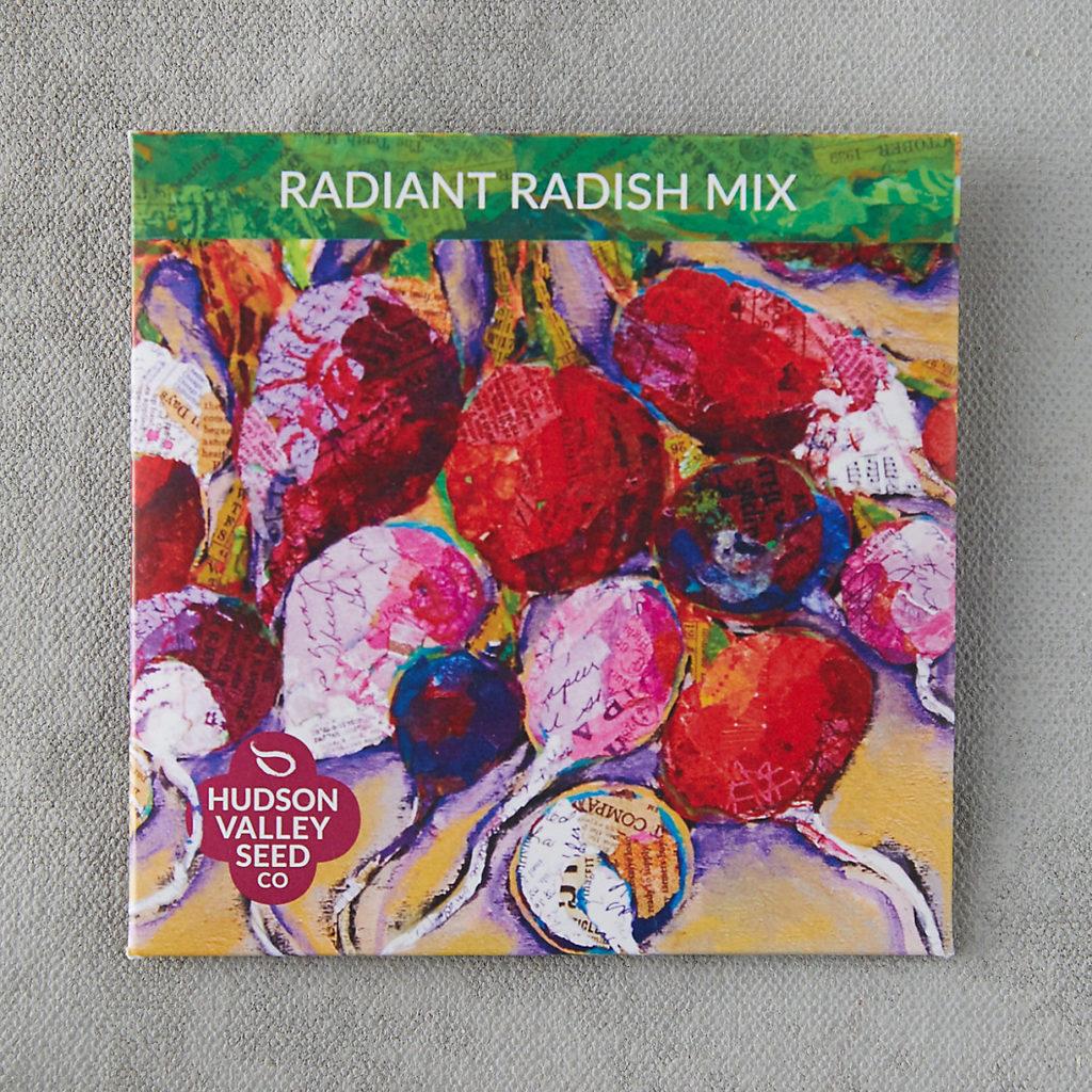 Radiant Radish Blend Seeds $3.95