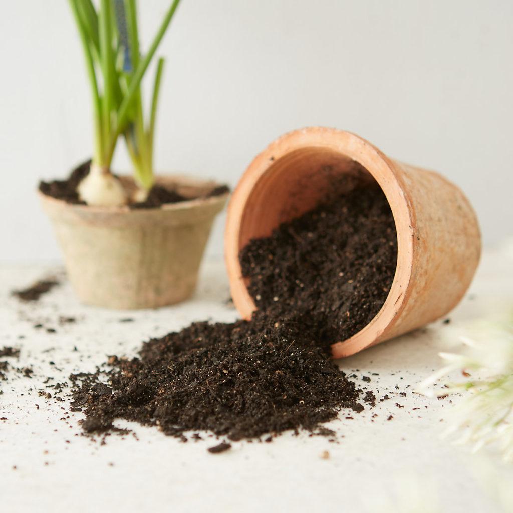 Organic Mechanics Premium Blend Potting Soil $20.00