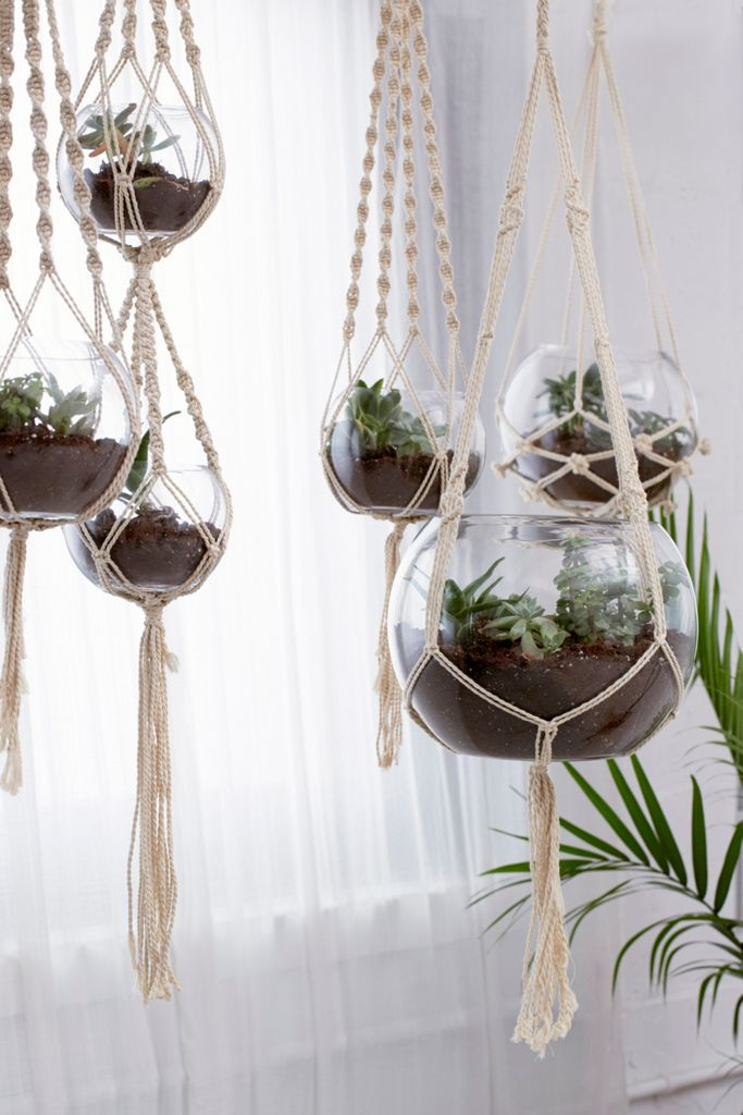 Hanging Macramé Terrarium - Set Of 5 $249.00