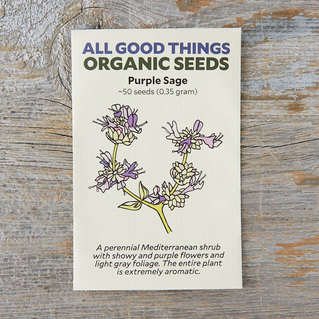 Purple Sage Seeds $3.75