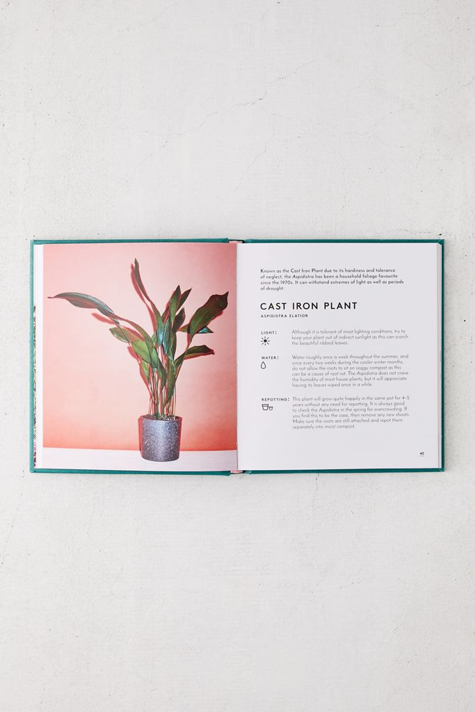 Little Book of House Plants and Other Greenery By Emma Sibley $14.99