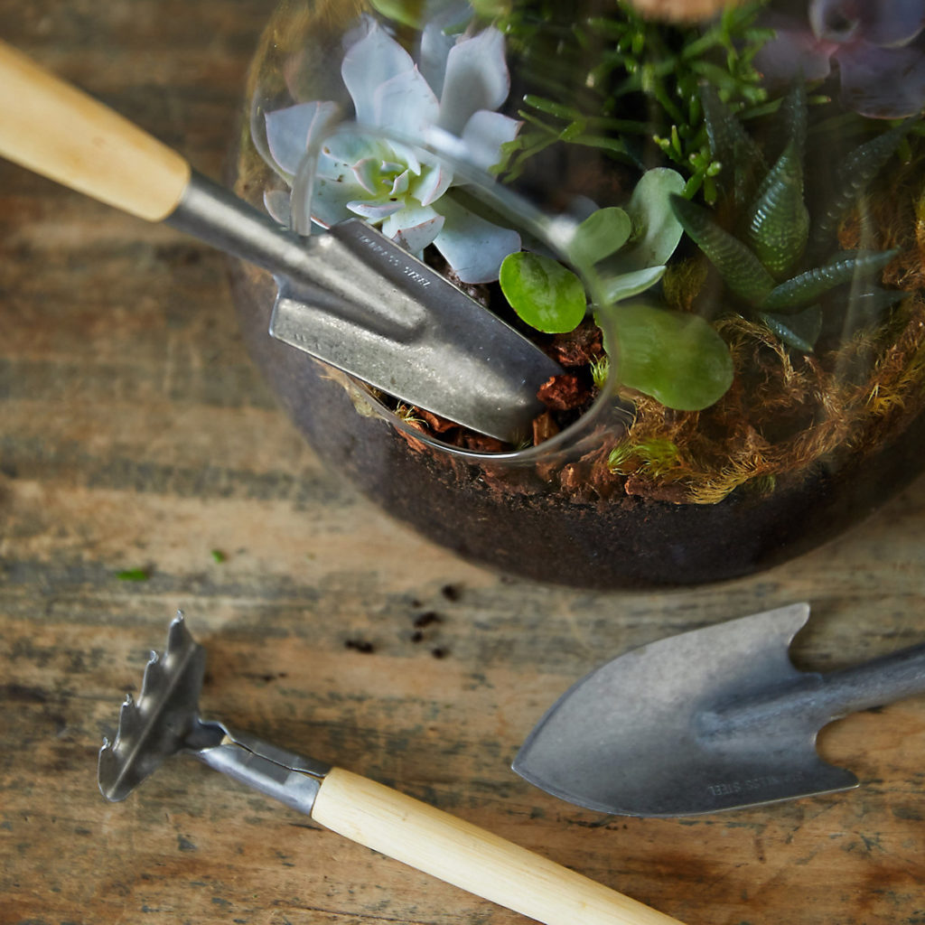 Mini Indoor Hand Tool Set $18.00