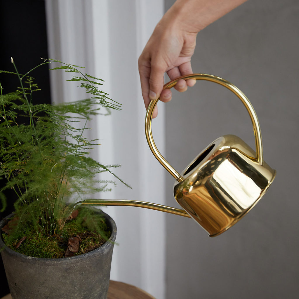 Brass Watering Can $34.00