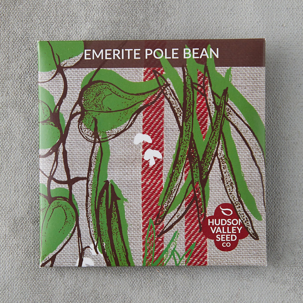 Emerite Pole Bean Seeds $3.95