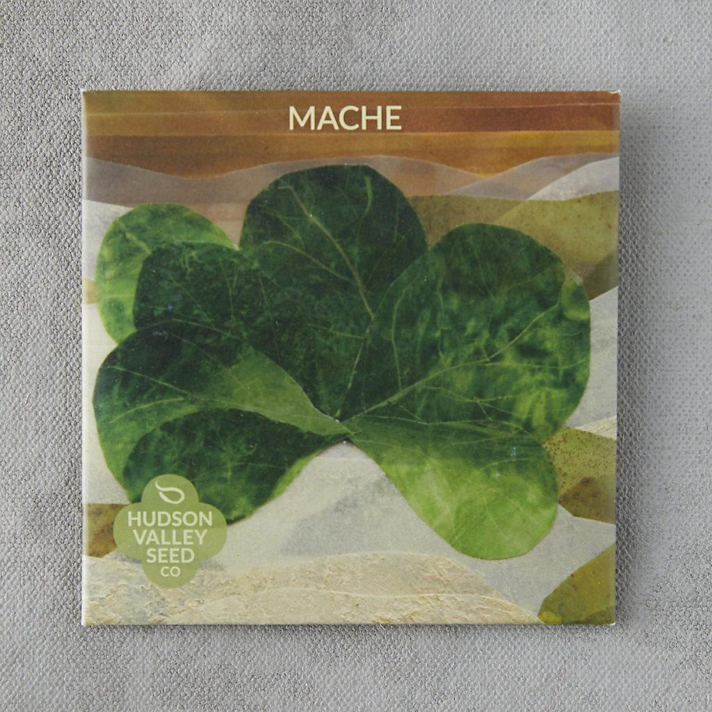 Mache Greens Seeds $3.95