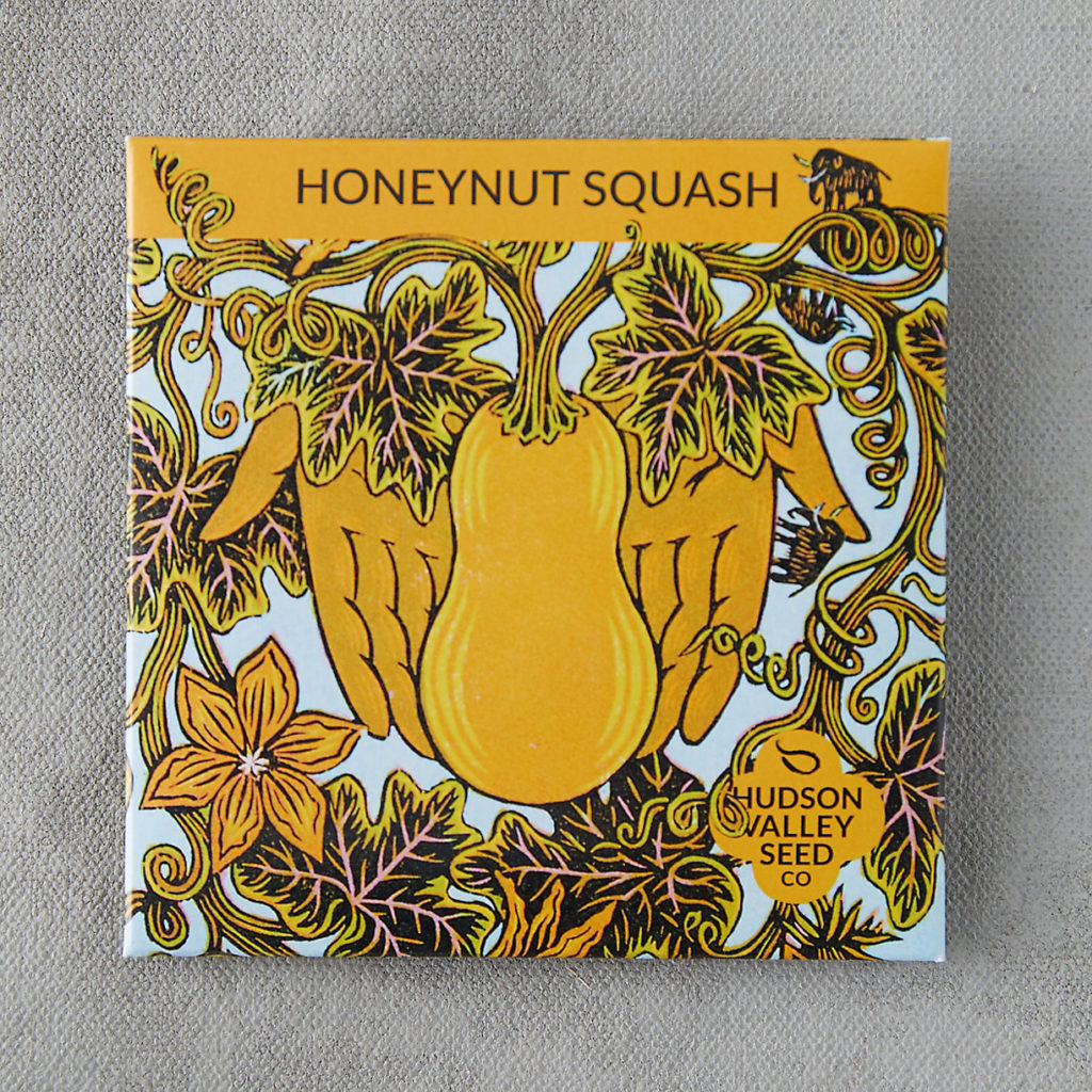 Honeynut Squash Seeds $3.95