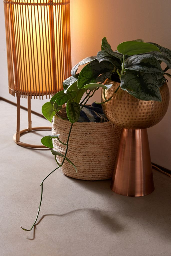 Vanessa Tall Metal Planter $39.00