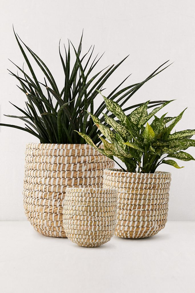 Dia Natural Basket Planter $19.00 – $29.00