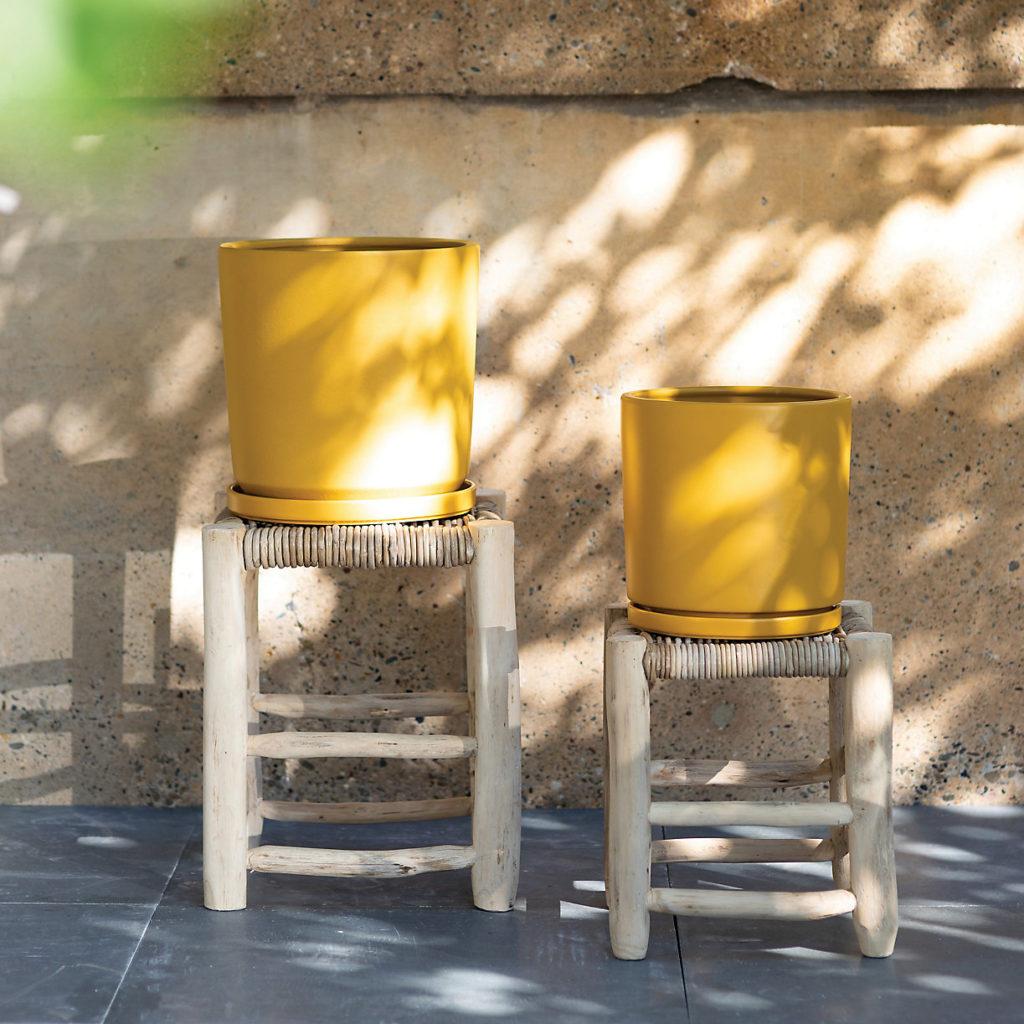 Porcelain Cylinder Pot $68.00https://fave.co/3aDIGcg