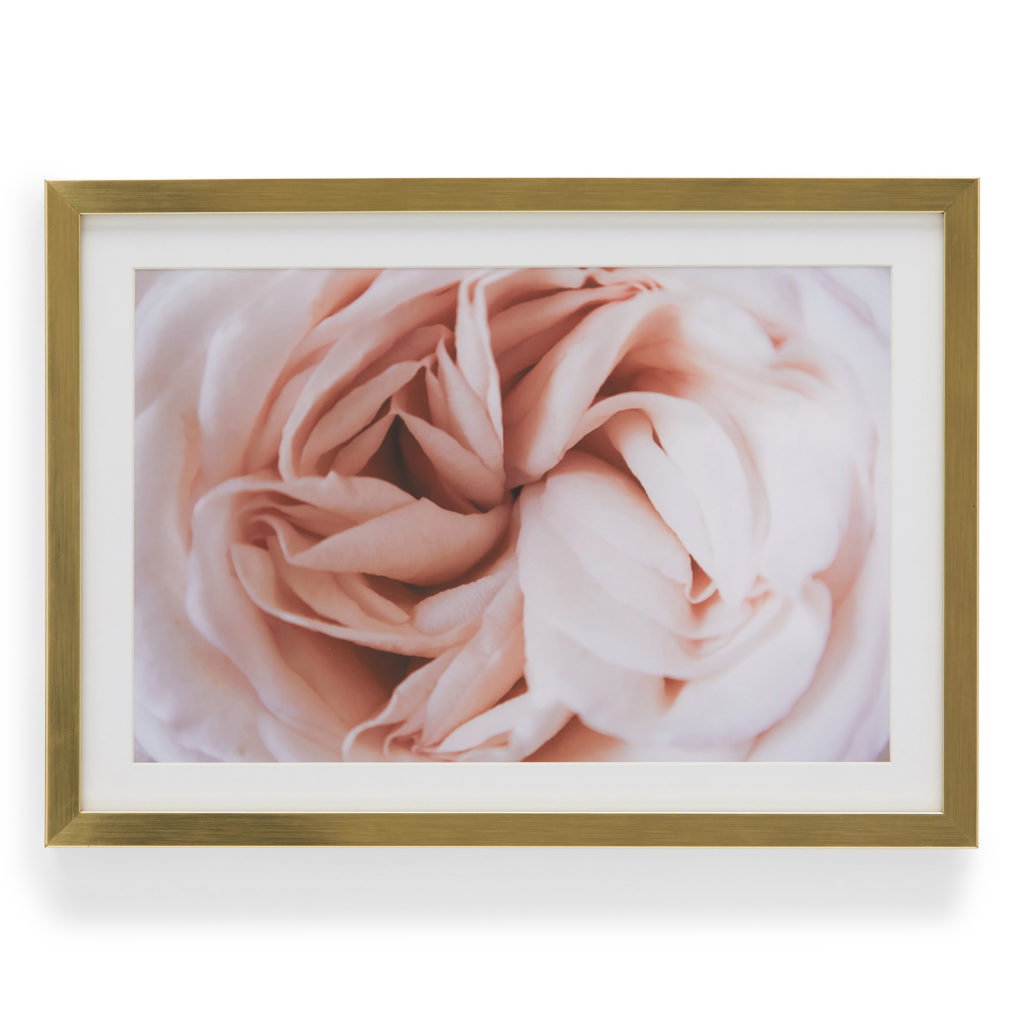 MoDRN Pink Rose Framed Wall Art $39.99