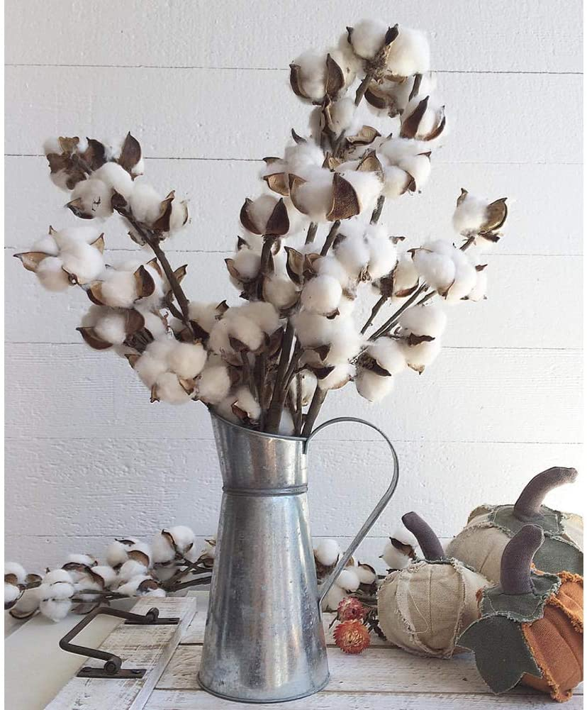Cotton Branches Farmhouse Decor $16.89