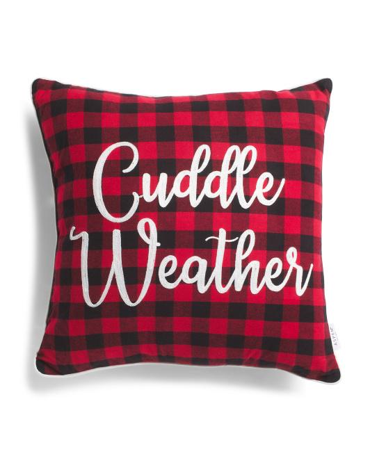 ASPEN 20x20 Cuddle Weather Pillow $16.99