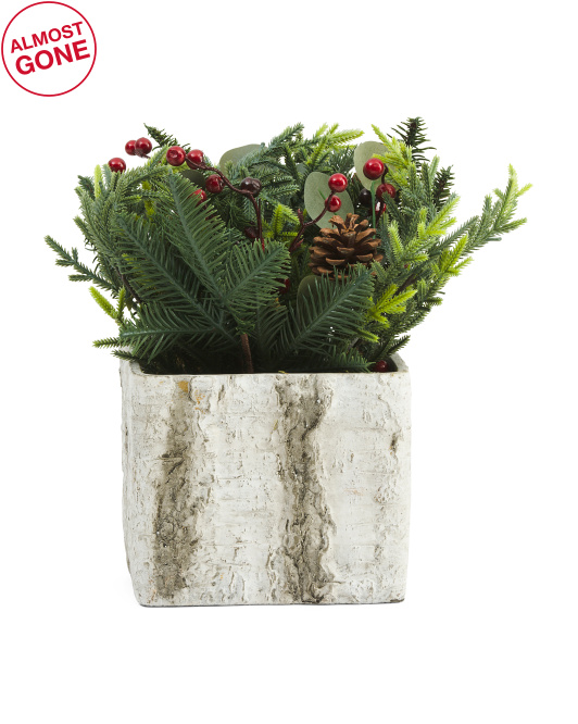 SILKCRAFT OF OREGON Christmas Pine With Berries In Birch Box $24.99