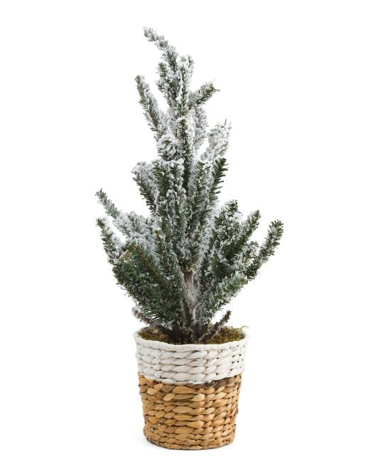 SILKCRAFT OF OREGON 24in Faux Nordic Tree In Basket $24.99