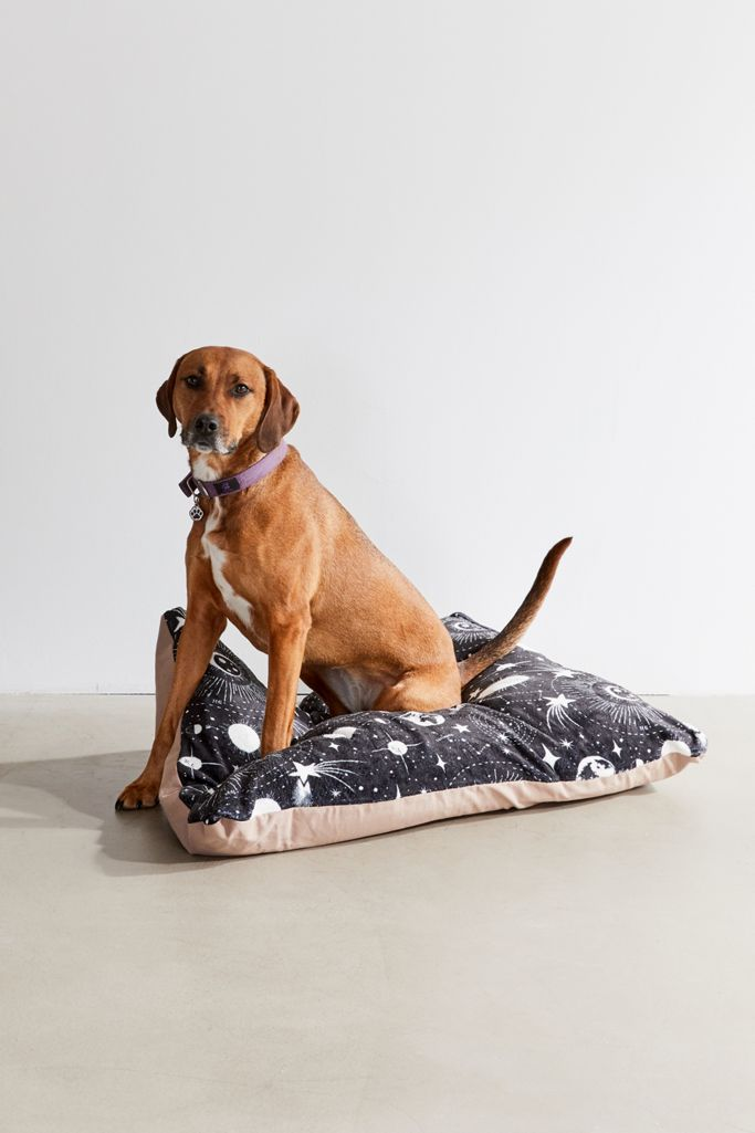 Heather Dutton For Deny Solar System Pet Bed $99.00